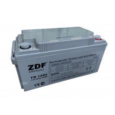 Аккумулятор тяговый ZDF DTM1265 AGM 12V 65 a/h
